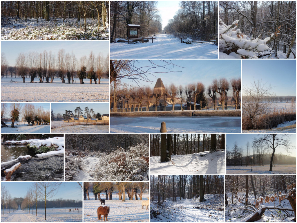 2009_Les_Yvelines_sous_la_neige