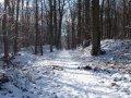 2009_01_paysage_neige_yvelines_manet_0005___800x600