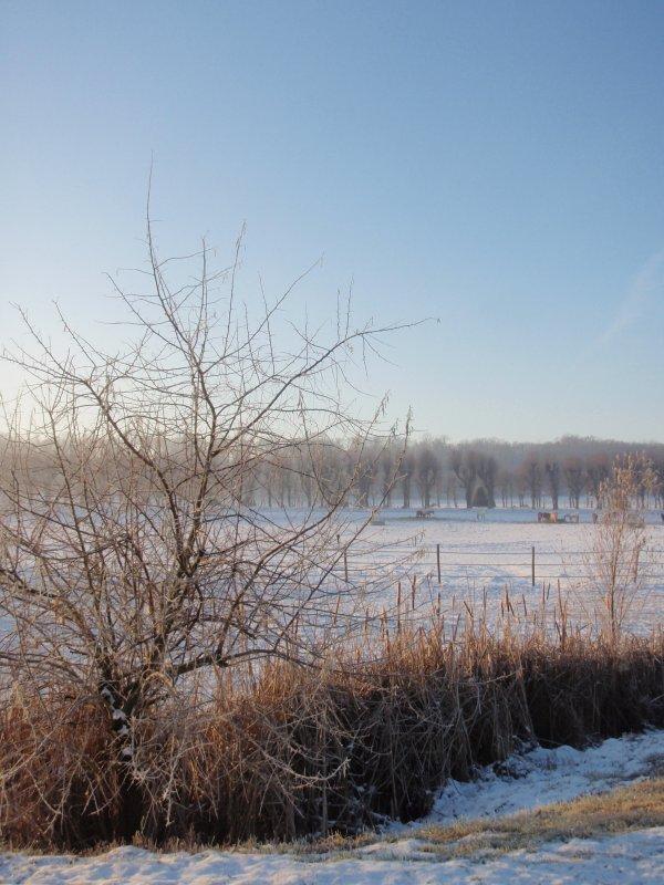 2009_01_paysage_neige_yvelines_plaisir_0001___800x600