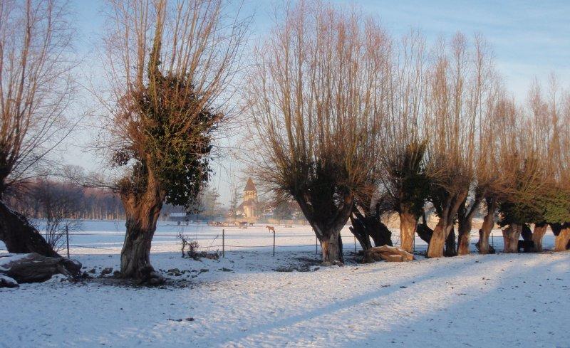 2009_01_paysage_neige_yvelines_plaisir_0010___800x600