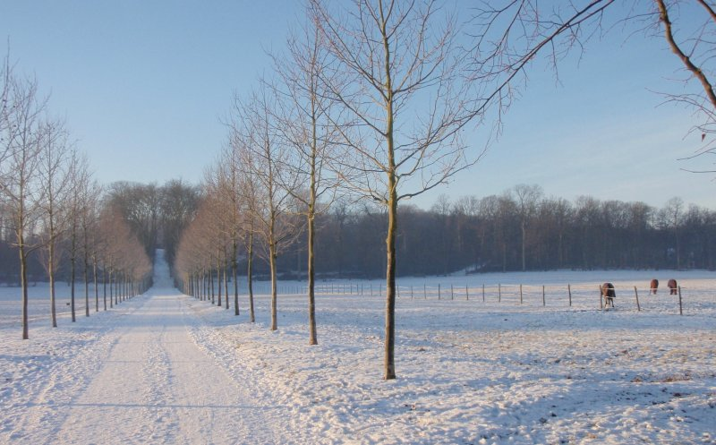 2009_01_paysage_neige_yvelines_plaisir_0012___800x600