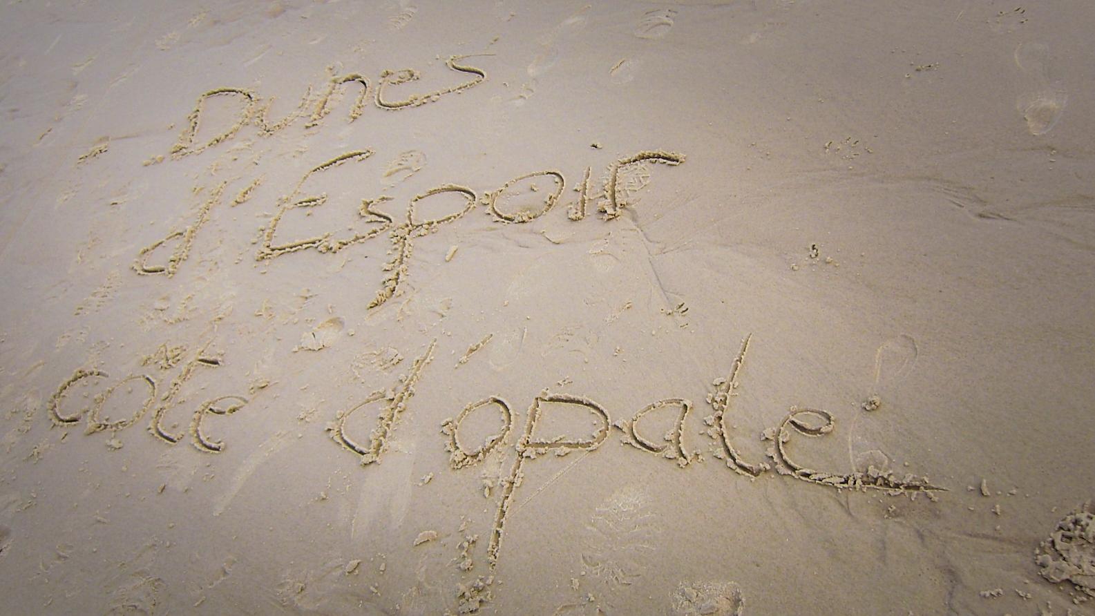 Dunes-Espoir_-_2010-09_-_Trail_Cote_d_Opale-2010-09-08_0009